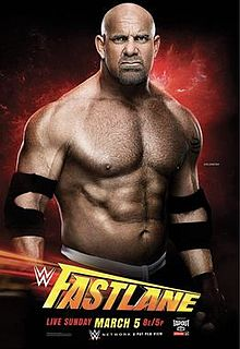 official_wwe_fastlane_2017_poster